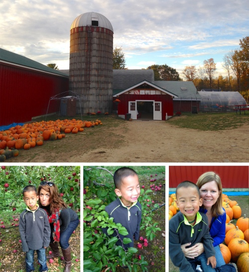 One of my favorite things in the fall is apples.  I love them - baked, raw, fried, dried, sautéed - you name it I like it.  My nephew Henry loves fall too, so we did a little app;e picking at Meadow Ledge Farms in Loudon, NH.